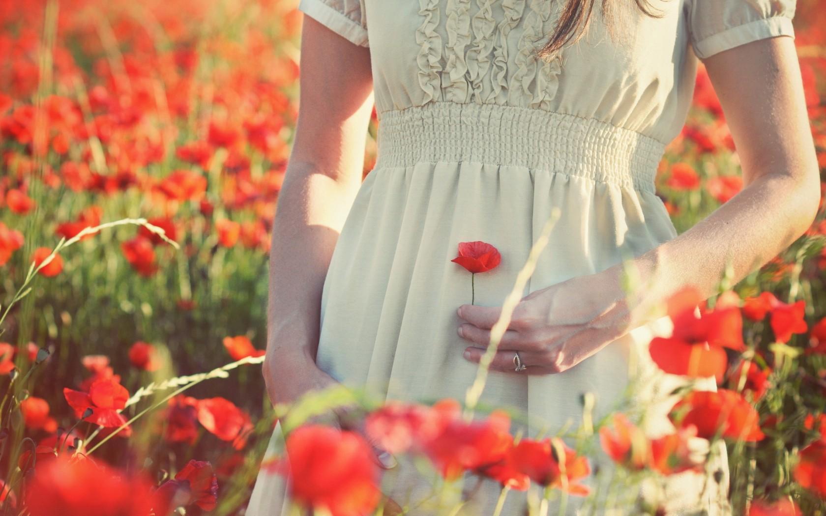 Кто не хочет сорвать ее цветок